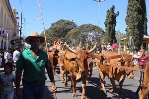 Encontro de carros de boi em Paraguaçu