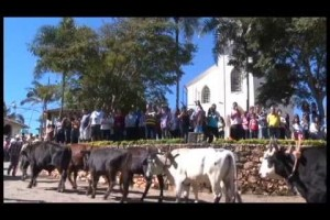 XII Desfile de carro de boi em Santana do Garambéu