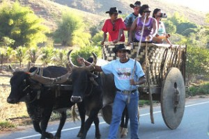 Festa do carro de boi em Resplendor