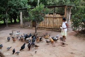 O povo indígena Mucurim em Minas Gerais