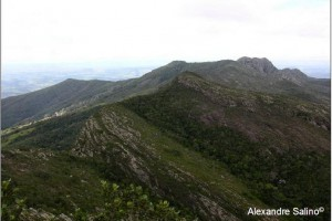Parque Florestal de Sete Salões nos municípios de Resplendor, Santa Rita do Itueto, Conselheiro Pena e Itueta