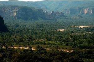 Parque Nacional Grande Sertão Veredas no município de Chapada Gaúcha