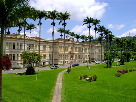 Université Fédérale de Viçosa