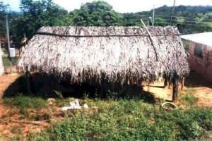 FESTA Kaxixó da aldeia Indígena em Martinho Campos